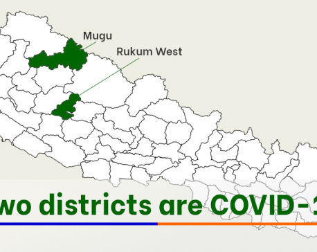 COVID-19 is still spreading far and wide, only two districts report zero cases