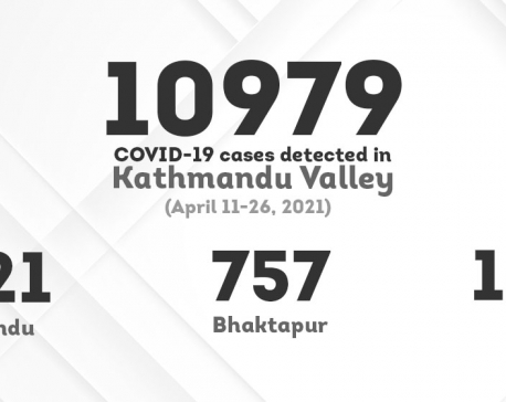 Infographics: COVID-19 infection rate in Kathmandu Valley in the past two week weeks