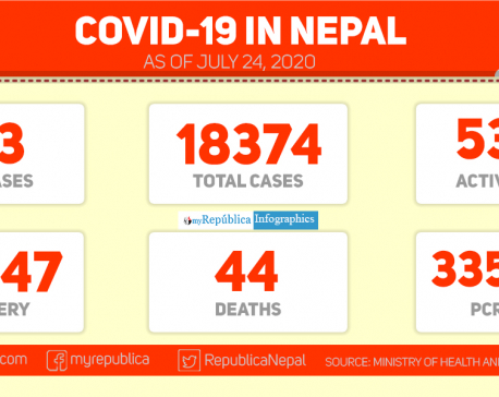 COVID-19 tally reaches 18,374 with 133 new cases in past 24 hours; 70.5 percent patients recover so far