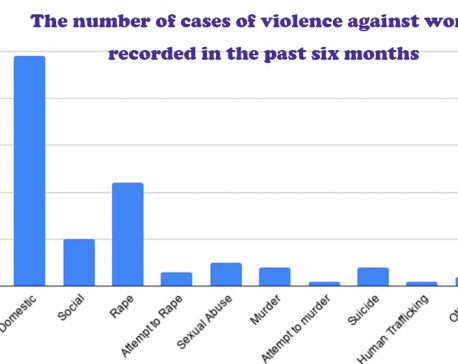As many as 1,673 cases of violence against women recorded in the past six months