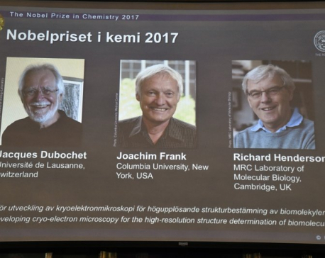 Nobel Prize honors technique for seeing molecules' details