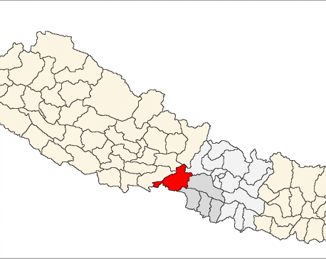 Seven protesters arrested in Chitwan