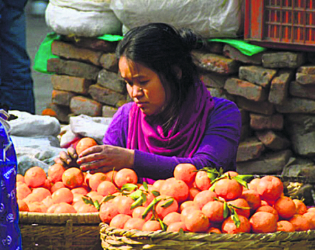Can Nepal export citrus fruits?