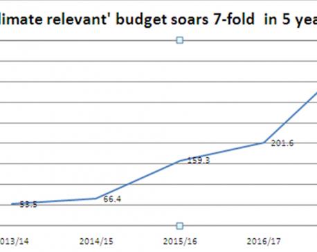 'Climate relevant' budget allocation said to be unrealistic