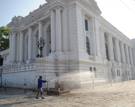 Kathmandu metropolis sprays disinfectant in the city (with photos)