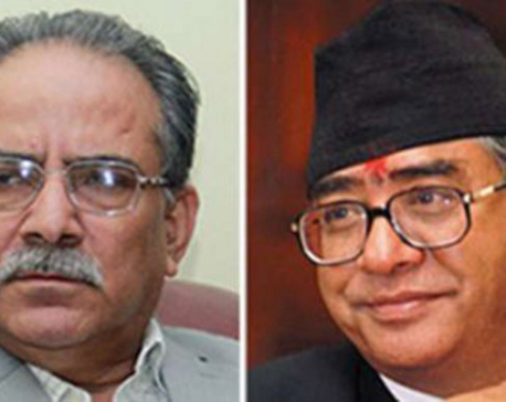 PM Dahal and NC President discuss constitution amendment