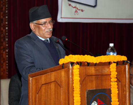 Constitution amendment to resolve political problems: PM Dahal