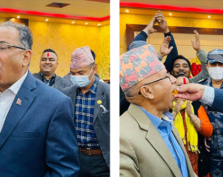 Dahal, Nepal feed sweets to each other to celebrate victory after SC verdict