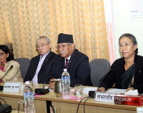 Dahal calls for high-level diplomatic efforts to settle Kalapani issue