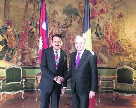 Mahat defends Nepal constitution in Brussels