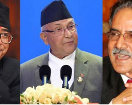 Heavyweights of 3 big parties to address mass meetings in Chitwan today