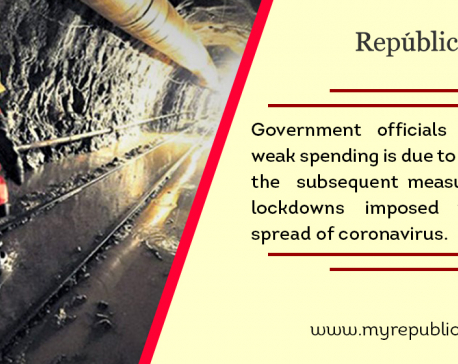 Govt spends only 11 percent of budget in first two months of current fiscal year as coronavirus cripples economy