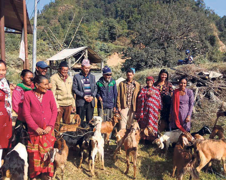 Needy provided with goats for income generation in Dhading