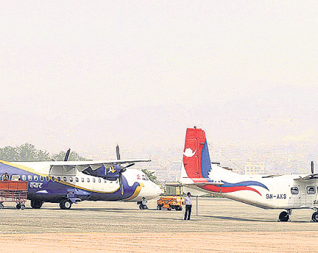 Domestic airlines to provide up to 36% discounts on airfare