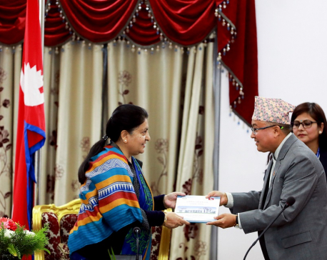 Election Commission submits annual fiscal year report to President Bhandari