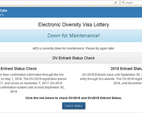 Consultancies continue to charge for DV forms despite server-down