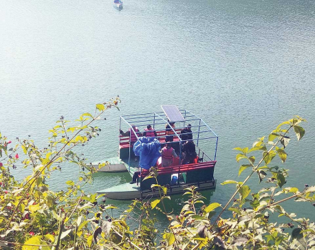Solar boats can be operated in Fewa Lake: Experts