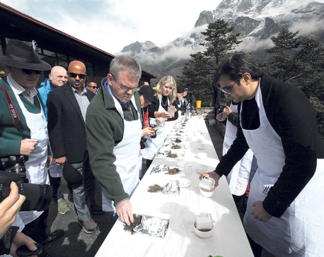 Tea tasting event held in Everest region
