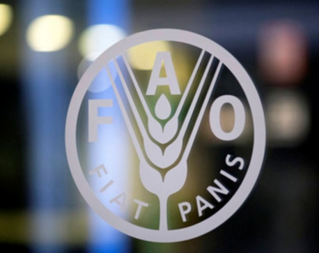 At 75, FAO is as relevant as ever