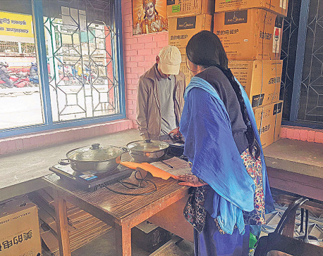 Govt prepares Rs 1b subsidy to promote use of induction stove