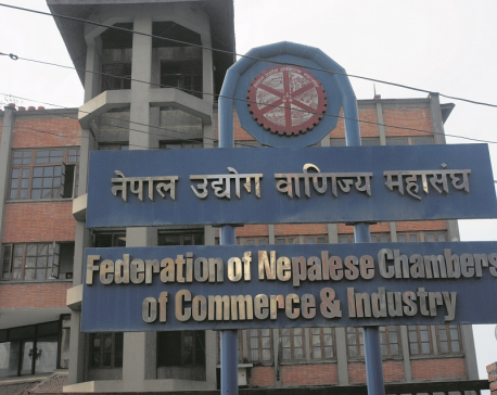 FNCCI seeks support from government to revive business sector