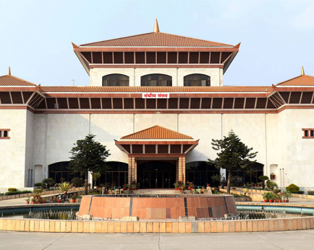 Poll for chairmen of two joint parliamentary committees on Sunday