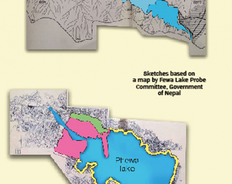 Fewa lake shrank from 10 to 4.2 sq km in 46 yrs