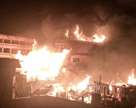 Seven houses gutted in massive fire in Taplejung's Phungling (with photos)