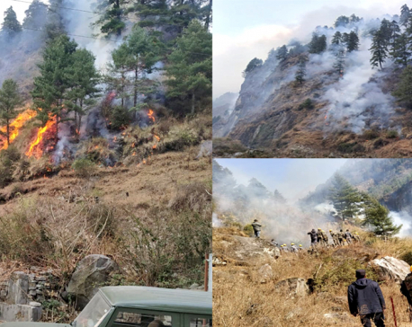 Forest fire raging Nason Rural Municipality in Manang for past three days