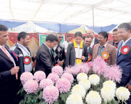 Godavari Flower Expo begins