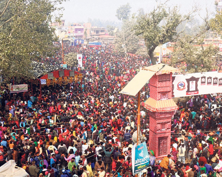 Over 1.5 million converge for Gadhimai Mela
