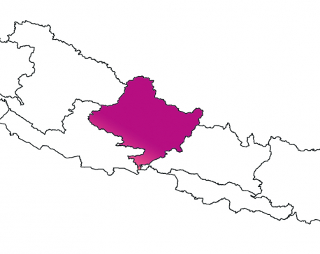 Over 27 pc COVID-19 patients in Gandaki Province are 20 to 30 years old