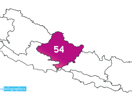 Gandaki reports 16 more COVID-19 cases, total number climbs to 54