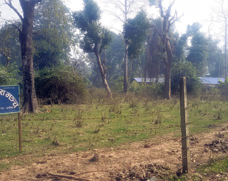 Community forest in Godawari Municipality being encroached upon