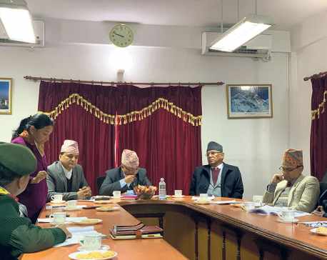 Govt to expedite expansion and upgradation of Bharatpur Airport