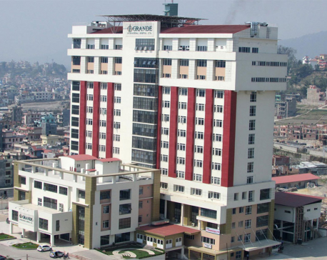 Grande Int'l Hospital begins kidney transplant service