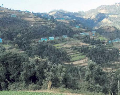 Village turns green in Rolpa