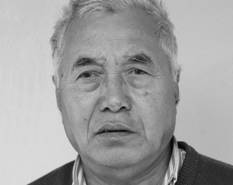 Hydropower expert Hari Man Shrestha passes away