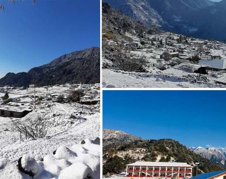 PHOTOS: Seven mesmerizing pictures capture Helambu's first snow of this season