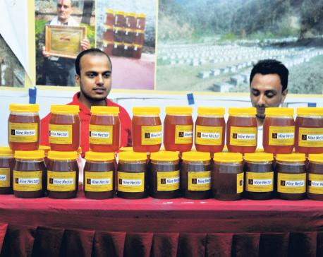 2nd National Honey Fair begins in Kathmandu