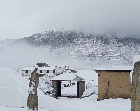 Snowfall cripples normal life in Humla (with photos)