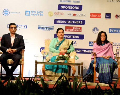 President Bhandari urges investors to invest in hydro sector