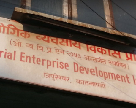 Lack of budget limits IEDI's effort to support start-ups