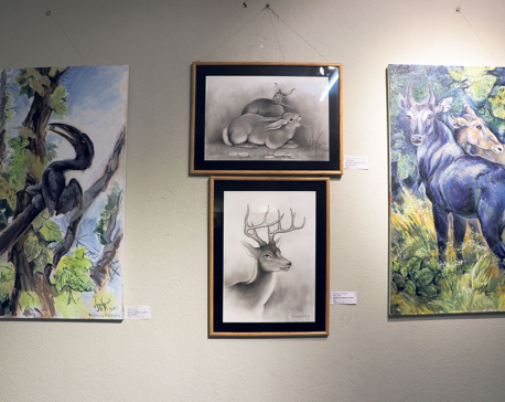 'Art for Nature'  pushes conservation