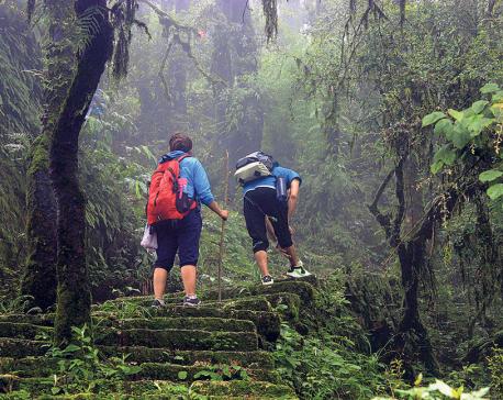 Hiking the slippery trails