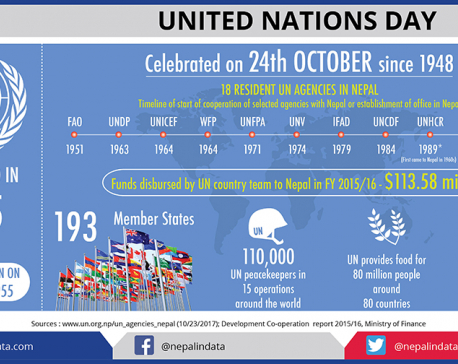Infographics: United Nations Day