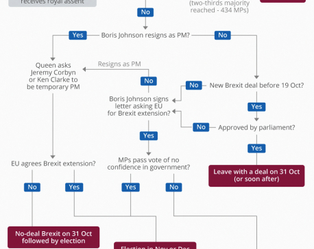 Infographics: Brexit: what now?