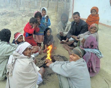 Cold hits life hard in tarai districts