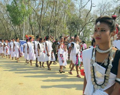 Glimpses of Pokhara Street Festival,Chitwan's Hatti Mahottsav