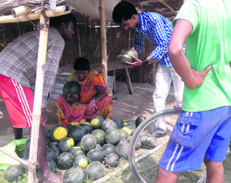 Growing imports make mockery of 'self-reliant economy'